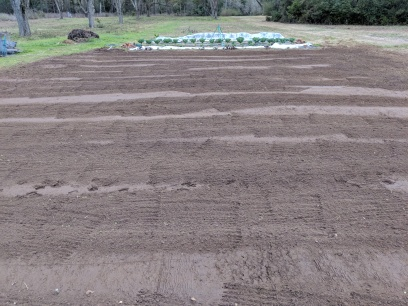 ...and after tilling and leveling